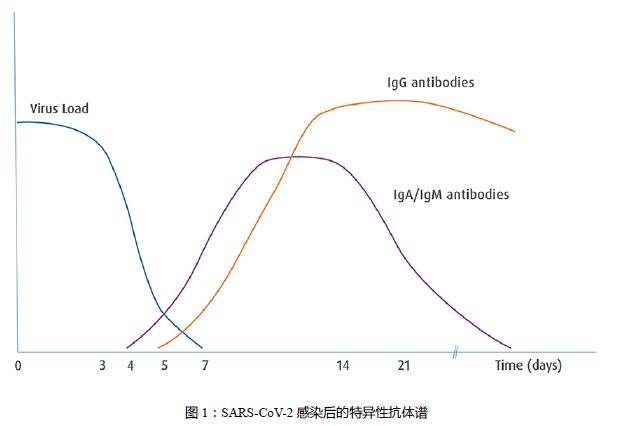 图1:SARS-CoV-2感染后的特异性抗体普